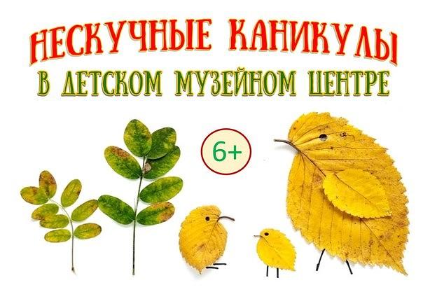 Министерство туризма Тверской области составило подборку топ-10 лучших мест в Твери и регионе для посещения с детьми во время осенних каникул