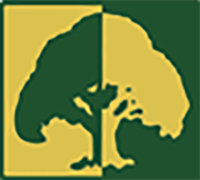 МАУ «Агентство социально-экономического развития»