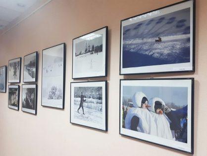 В выставочном зале Центральной городской библиотеки им. А.И. Герцена - фотовыставка «Новогодний калейдоскоп»